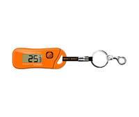 Цифровой измеритель давления в шинах с термометром и светодиодным фонарем (брелок) RST 00453