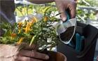 Садовые инструменты для балкона ДОМАШНЕЕ САДОВОДСТВО Gardena (08974-20)