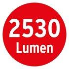 Прожектор светодиодный переносной Brennenstuhl, 30 Ватт (1172900302)