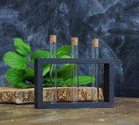 Стеклоприбор. Деревянная подставка с пробирками (3 пробирки), черный (300547)