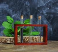 Стеклоприбор. Деревянная подставка с пробирками (3 пробирки), вишня (300544)
